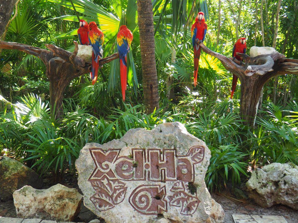 Riviera Maya, Mexico - Daydreaming Stories
